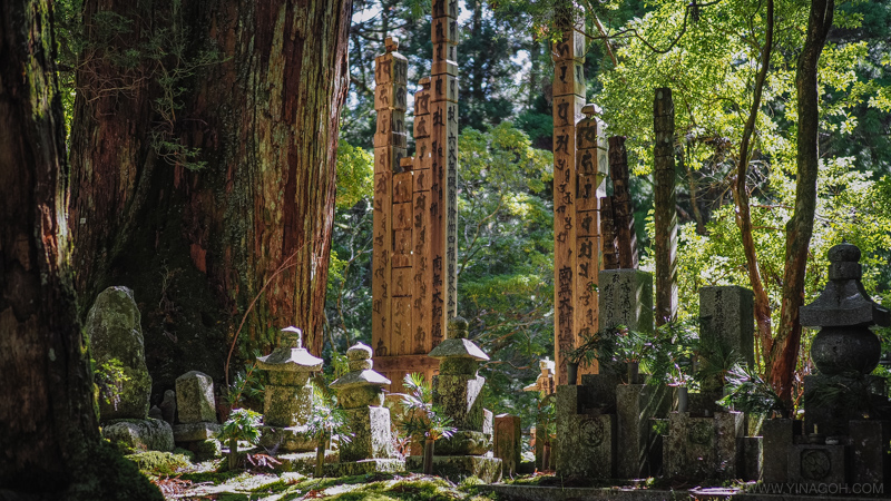 Image result for koyasan